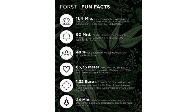 Fun Facts - Forst