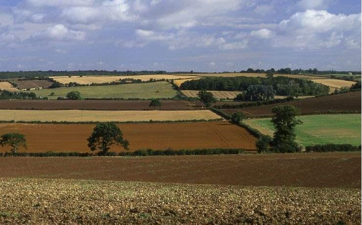 Farm tenancy