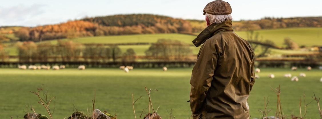 Farmer surveying land
