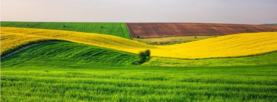 Farmland in Romania