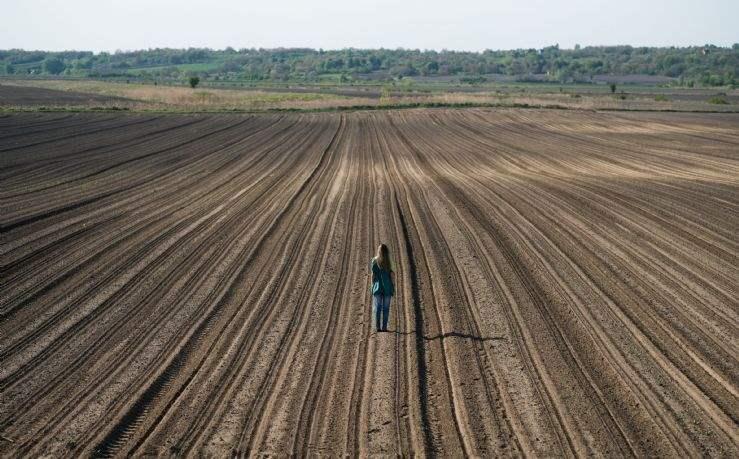 Surveying farmland