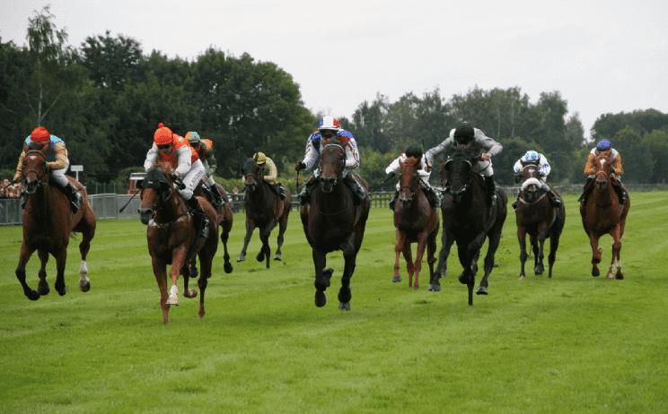 Racecourses vs race track