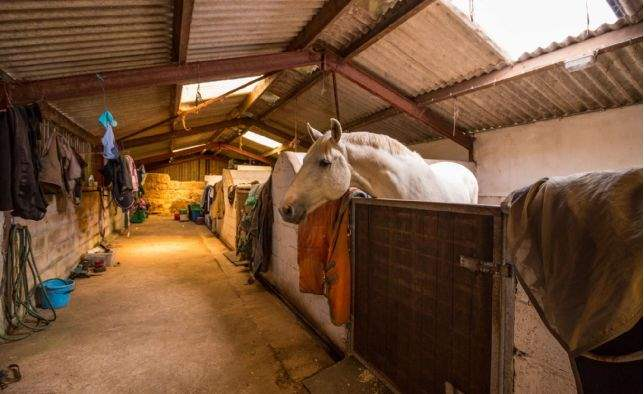 Laity Farm, Nr Falmouth, Cornwall