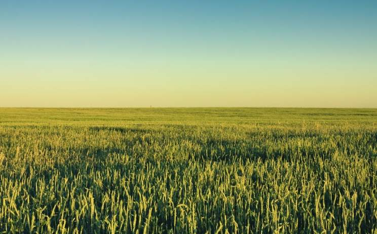 Social housing investment for rural landowners