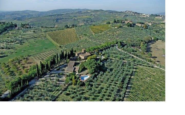 Panzano in Chianti, Flornce