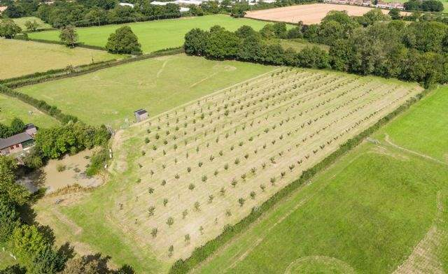 Picketts Farmhouse, Redhill, Surrey