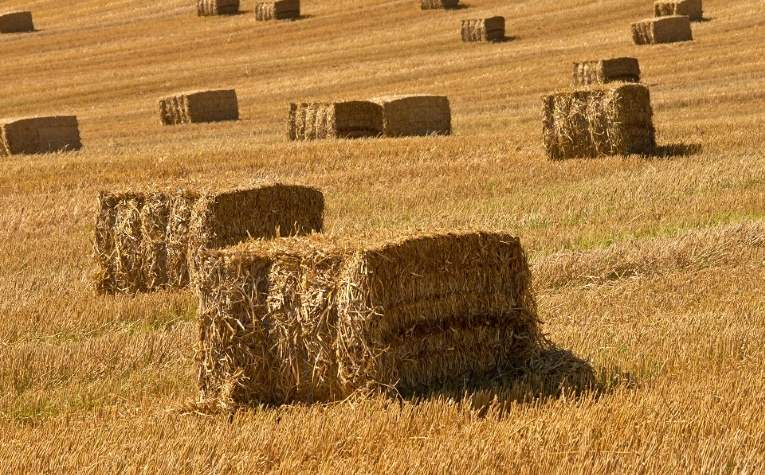 Savills Uk Blog Rural Property Reduce Heating Costs