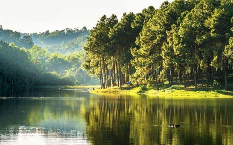 Zwischen Wiesen und Wäldern